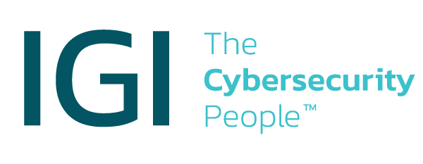 IGICybersecurityHubSpot.png